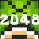 2048 Game: Turtle Evolution by DIY Game Development