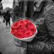 رواية انتقام يولد الحب - كاملة الفصول