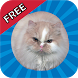 Jumping Cat FREE - touch & tap