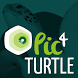 The Sea Turtle Global Network by Pic4Turtle