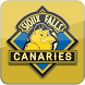 SF Canaries by Net Pistol