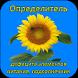 DiNut Подсолнечник by AgroSoftex