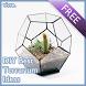 DIY Best Terrarium Ideas by Galvivre