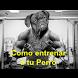 Como Entrenar a Tu Perro by Experto en Linea