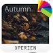 Theme XPERIEN™ - Autumn by IRemi theme