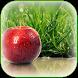 Apple Wallpaper by Innovative Wallpaper