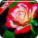 Flower Wallpaper Apps by AgungTelo