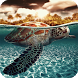Turtle Pack 2 Live Wallpaper by WallpapersLove