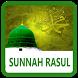 500 Sunnah Rasulullah by faridanurma