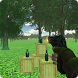 Bottle Shoot 3D by Bigwalt Games