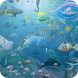 Fish - 3D Live Wallpaper by Camera