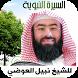 السيرة النبوية - نبيل العوضي by RamadanApp