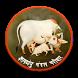 Kamdhenu Mangal Parivar by Excellent Softwares