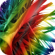 Colored Feather Live Wallpaper by WpStar