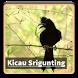 Kicau Suara Burung Srigunting by kangdeveloperstudio