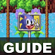 Guide:Sonic the Hedgehog by Wansco Games