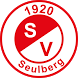 SV Seulberg Handball by Andreas Gigli