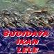 Cara Budidaya Ikan Lele Lengkap by ABGsarungan