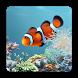 aniPet Marine Aquarium HD by aniFree