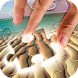 Beach Puzzle Game by Laland Apps