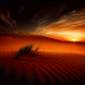 Desert Sunset Live Wallpaper
