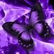 purple butterflies wallpaper by funny wallpapers fun llc