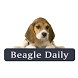 Beagle Daily by Right Hook Marketing