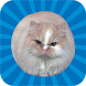 Jumping Cat - touch & tap by engsoft.tc