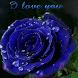 Dewy Blue Rose LWP by Daksh Apps
