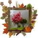 Autumn Photo Frames by Best Phone Photo Apps