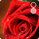 rose live wallpapers by socialbestlivewallpaper