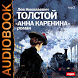 Аудиокнига Анна Каренина by IDDK