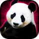 Slots Lucky Panda Casino Slots by Rocket Speed - Casino Slots Games