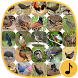 Appp.io - Bird Calls