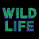 WILD LIFE Festival by Clarifi Media Limited