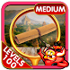 Secret Temples - Hidden Object by PlayHOG
