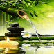Bamboo Water Live Wallpaper by Daksh Apps