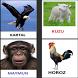 hayvan oyunu cocuklar icin by Turkce Eğitici, Türkçe Egitim, Egitici Oyunlar