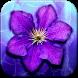 Purple Flowers Live Wallpaper by Jango LWP Studio