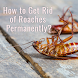 Get Rid of Roaches by AppJefuri