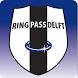 Ring Pass Delft by LISA Ledeninformatiesystemen B.V.