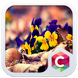 Crystal Flower Clauncher Theme by Best Themes Workshop
