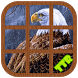 Eagle Sliding Puzzle by TTR