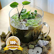 Mini Pond Ideas by zulfapps