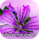 Flores con frases by Apps Cuba