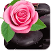 Pink rose petal background HD by Keyboard and HD Live Wallpapers
