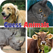 Guess Animals Picture by Miaw Games