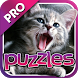 Cat Puzzles Pro by Mokool Inc