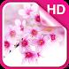Sakura Live Wallpaper HD by Dream World HD Live Wallpapers