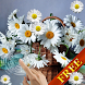 Chamomile Live Wallpaper by CharlyK LWP